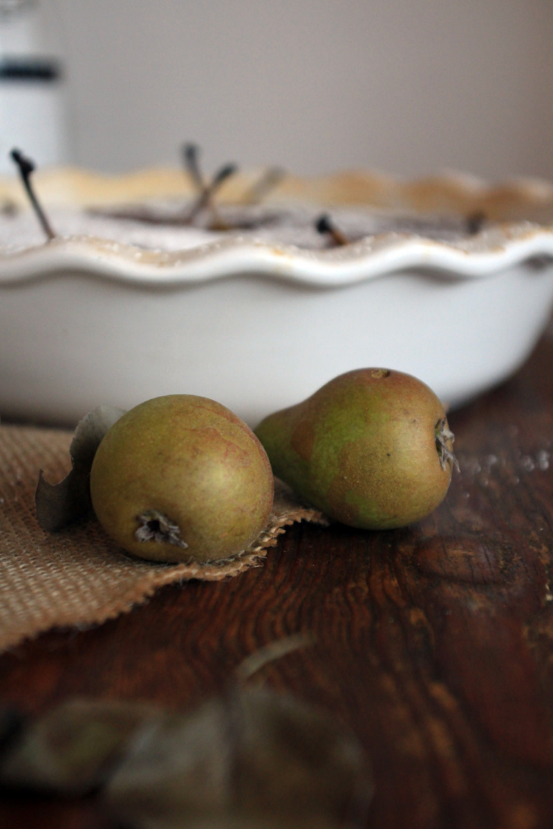Almond Cinnamon Tart with Caramel & Honey Poached Mini Pears / Schoko & Zimt Mandel-Tarte mit pochierten Karamellbirnen {flowers on my plate}
