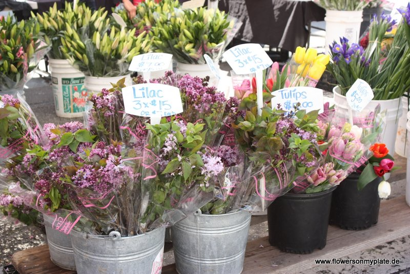 santa monica farmers market4
