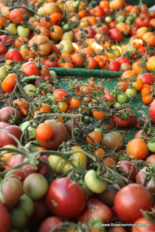 santa monica farmers market2