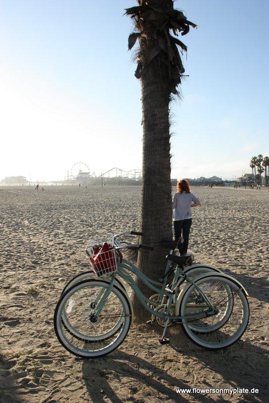 bikes santa monica