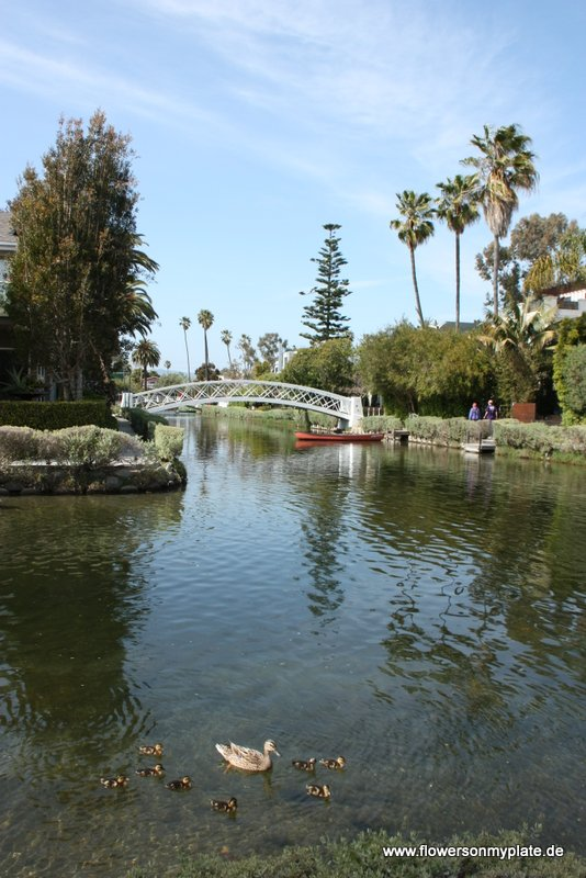 Venice Canals2